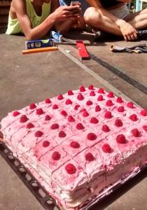 Pinker Himbeerbiskuitkuchen