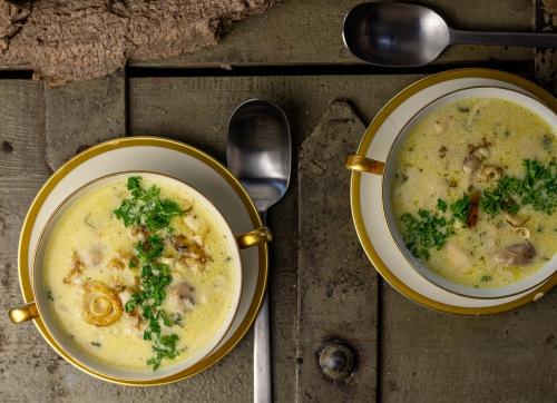 Köstliche Cremesuppe vom Schopftintling