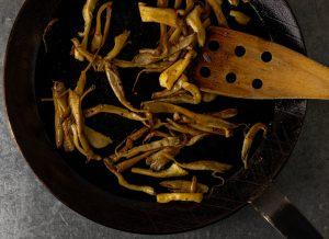 Anraten der Austernseitlinge