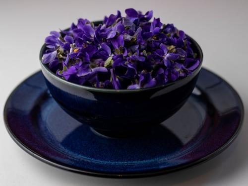 Veilchenblüten, essbare Blumen für den Duftessig