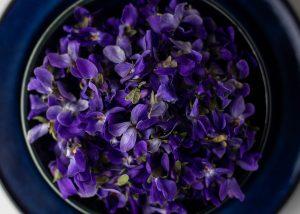 Fleißig die essabren Blüten gesammelt