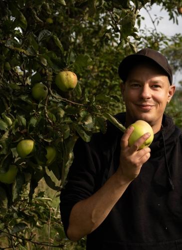 Knackiger Apfel, frisch vom Baum