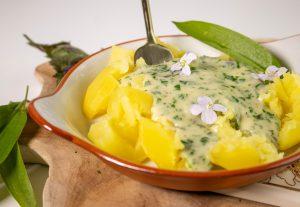 Wildkräuter gehören zu den klimafreundlichsten Zutaten in der Küche!