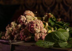 Frisch vom Feld: essbare Rhabarberblüten