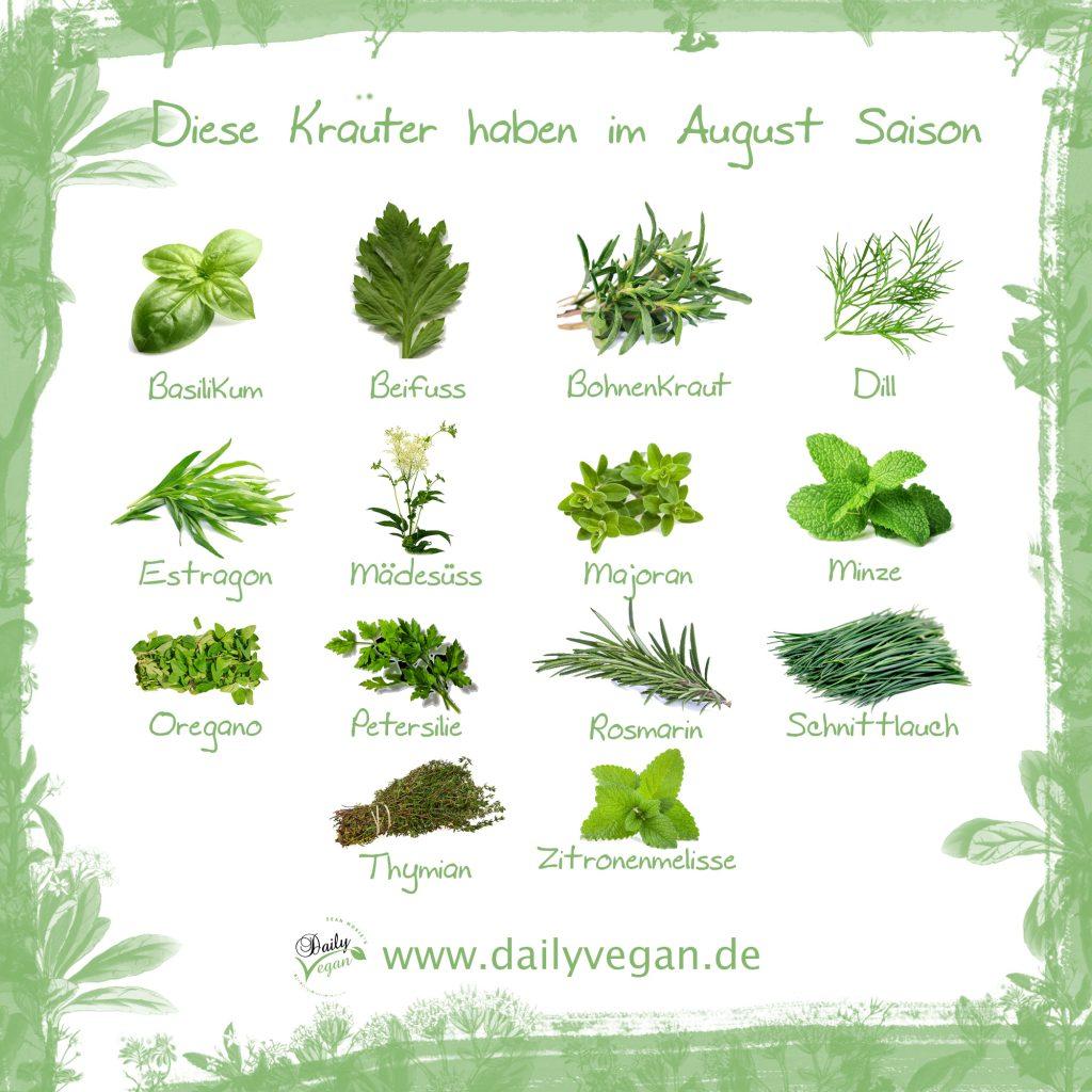 Saisonale Kräuter im August