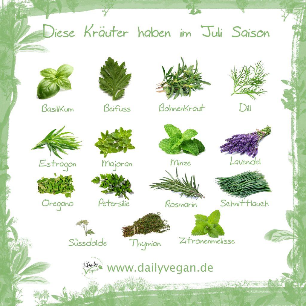 Infografik: Saisonale Kräuter im Juli