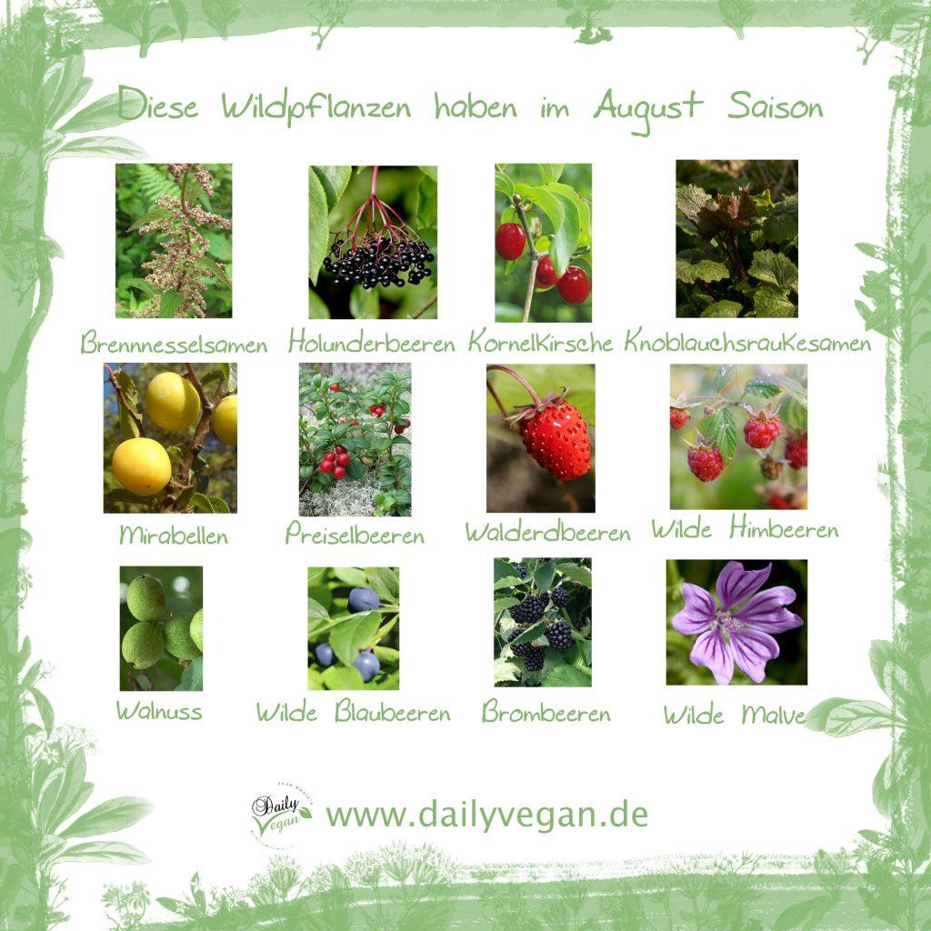 Saisonale Wildpflanzen