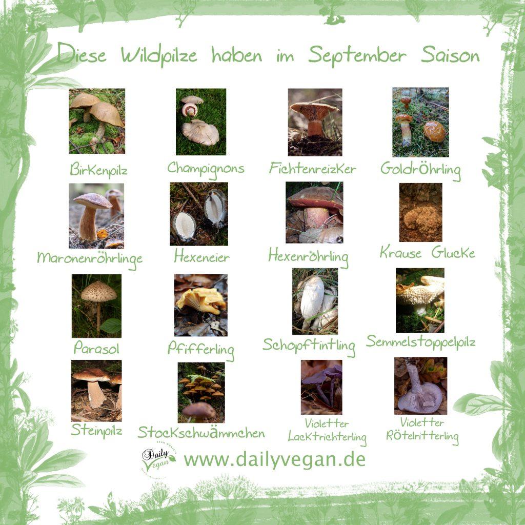 Saisonale Wildpilze im September
